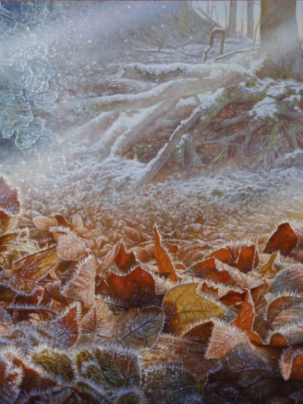 Herfst/ winter